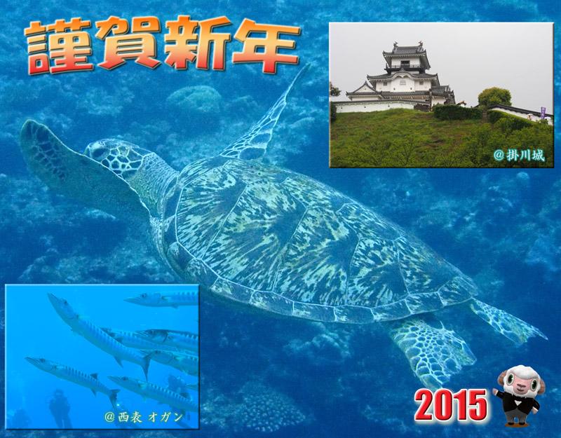 年賀状2015Divinオガン+掛川sweb年賀
